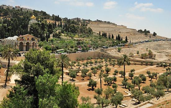 Der Ölberg in Jerusalem. (© Matthias Hinrichsen)