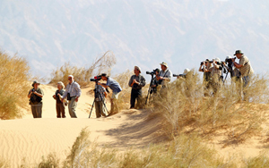 Eine Gruppe Vogelbegeisterter aus Deutschland beim Betrachten einheimischer Lerchen in den Sanddünen von Yotvata. (Foto: Thomas Krumenacker)