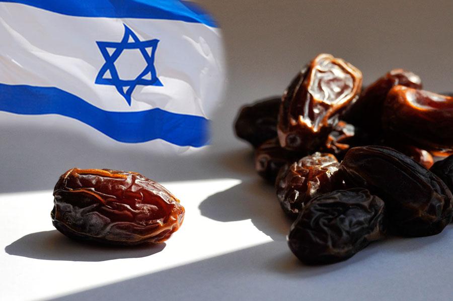 Produkte aus Israel wie Medjoul Datteln sind bei Galeria Kaufhof erhältlich. (© www.israelmagazin.de)