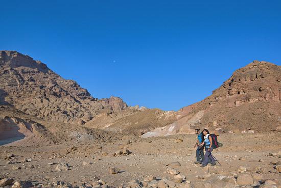 Auf den Spuren Jesu das Heilige Land erkunden, so wie hier in der Wüste. (© Israelisches Verkehrsbüro)