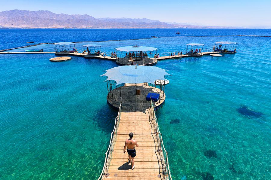 Am Roten Meer bei Eilat kann man sogar mit Delphinen schwimmen und das bei glasklarem Wasser. (© Matthias Hinrichsen)