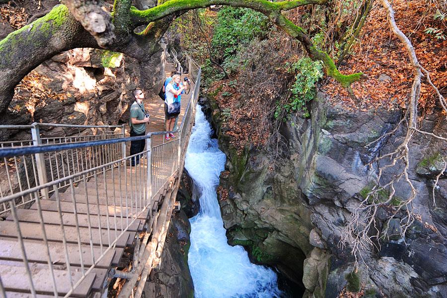 Ein gut ausgebauter Pfad führt durch ein idyllisches Tal zum Banias Wasserfall. (© Matthias Hinrichsen)