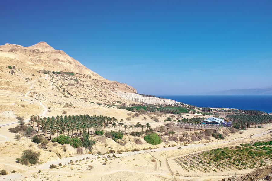 Traumhafter Ausblick über das Tote Meer von En Gedi aus. (© Matthias Hinrichsen)