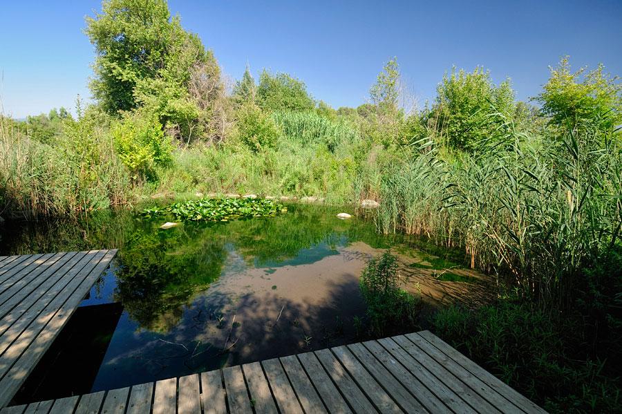 Das Snir Naturreservat hat viele stille Ecken mitten im natürlichen Lebensraum. (© Matthias Hinrichsen)
