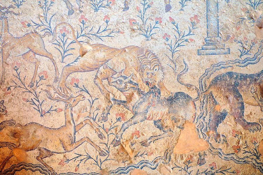 Detailreiche Mosaikböden sind die Höhepunkte in Sepphoris. (© Matthias Hinrichsen)