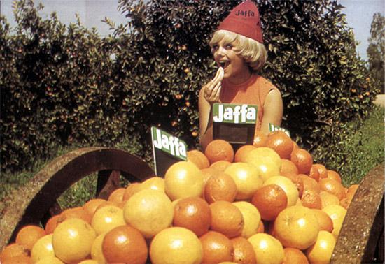 Die weltbekannten Jaffa-Orangen waren einerseits Einkommensquelle, andererseits politisches Mittel. (Filmausschnitt)
