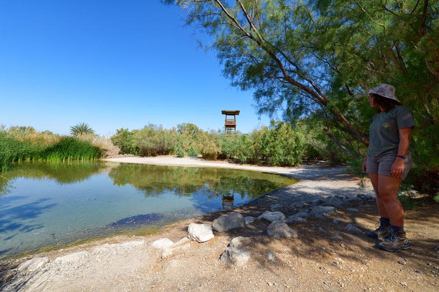 Teich im Naturreservat Enot Tsukim, der als Wasserstelle für die Tiere dient, aber nur in Begleitung eines Guides erreichbar ist. (© Matthias Hinrichsen)