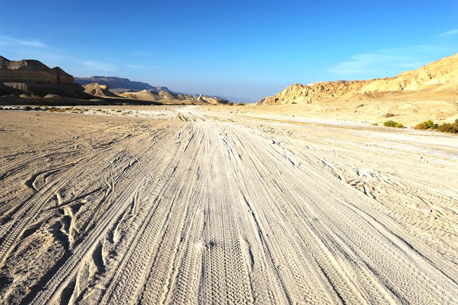 Spuren im Negev-Sand. (© Matthias Hinrichsen)