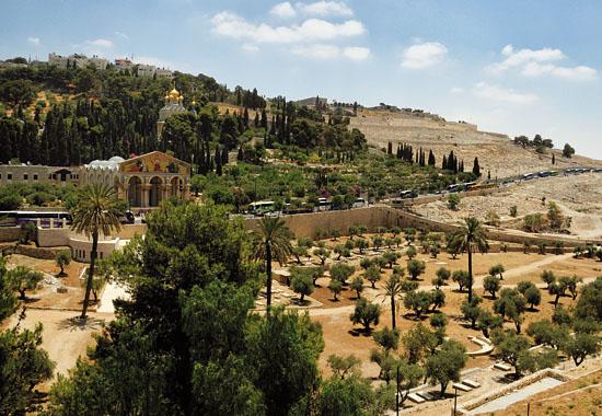 Der Ölberg in Jerusalem, links ist der Garten Gethsemane. (© Matthias Hinrichsen)