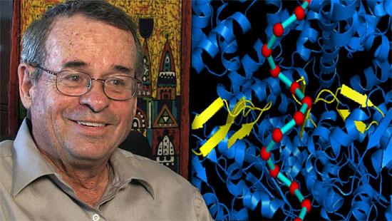 Gewinnt den Nobelpreis für Chemie: der gebürtige Israeli Prof.  Arieh Warshel. (© University of Southern California)
