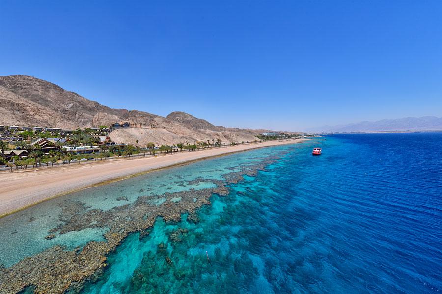 Korallenriff Eilat
