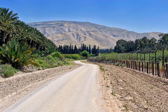Kilometerlange Wege verbinden die Felder und Plantagen des Kibbutz, gleich an der Grenze zu Jordanien. (© Matthias Hinrichsen)