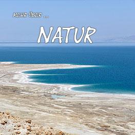 mehr-ueber-Natur-263