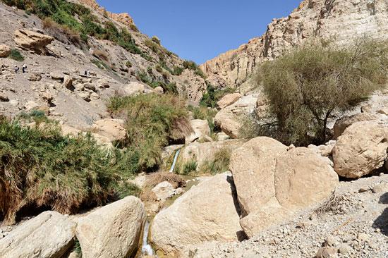 Wadi David in der Oase Ein Gedi. (© Matthias Hinrichsen)