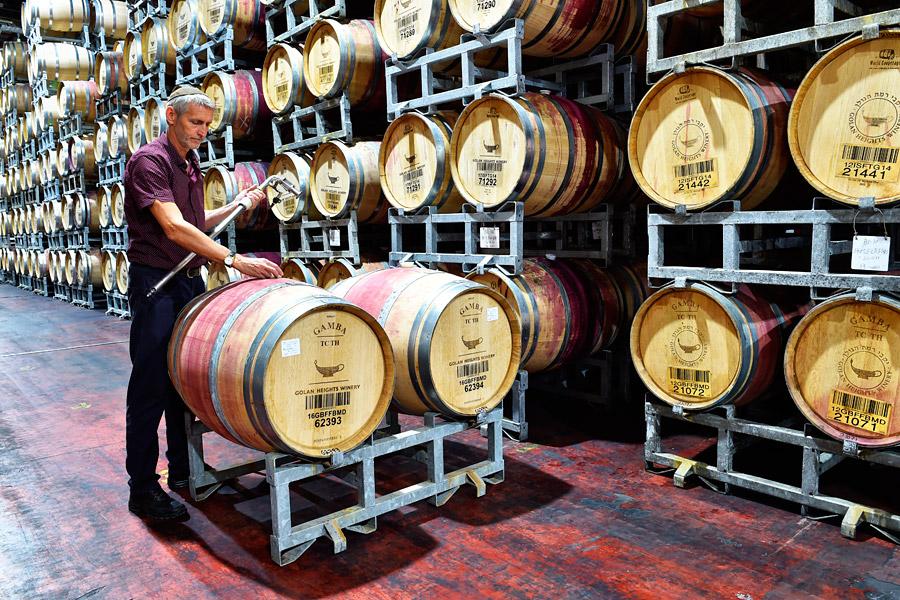 Der Wein in den Eichenfässern der Golan Height Winery wird geprüft. (© Matthias Hinrichsen)