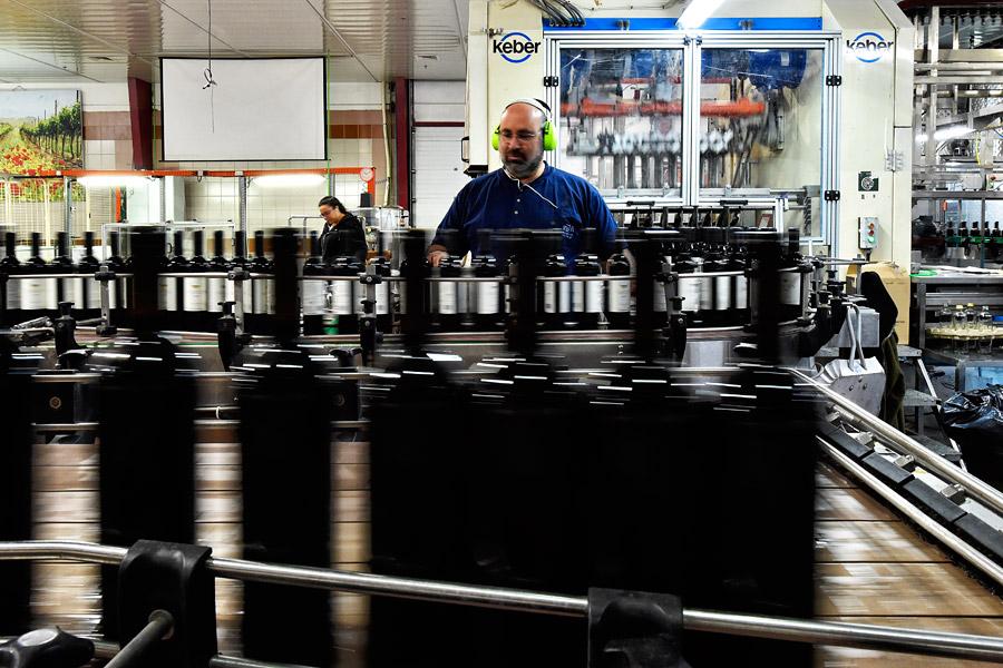 Tausende von Flaschen werden pro Tag jeden Tag befüllt. (© Matthias Hinrichsen)