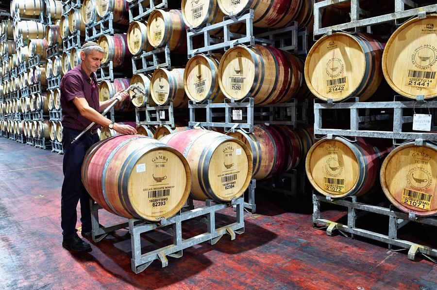 Wein in Eichenfässern der Golan Heights Winery