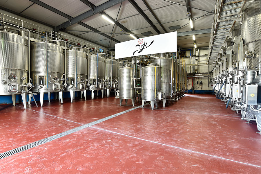 Yatir Winery Weingut