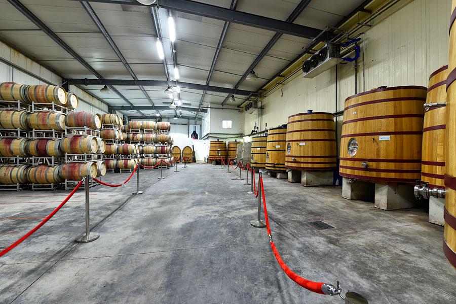 Eichenfässer Yatir Weingut