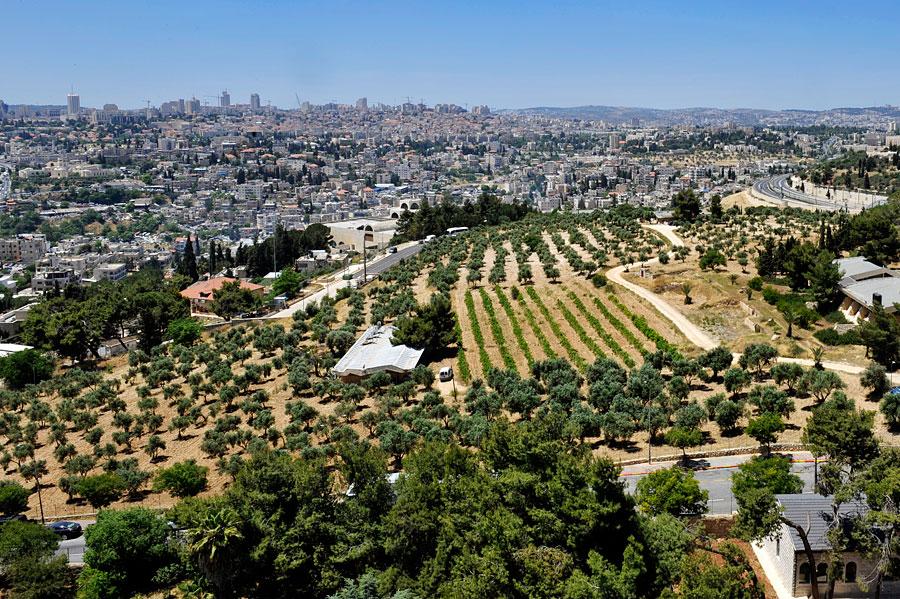 Jerusalem erstreckt sich über mehrere Hügel.