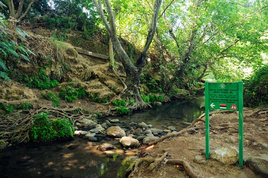 Der Israel National Trail - INT - führt auch durch das Naturreservat Snir. (© Matthias Hinrichsen)