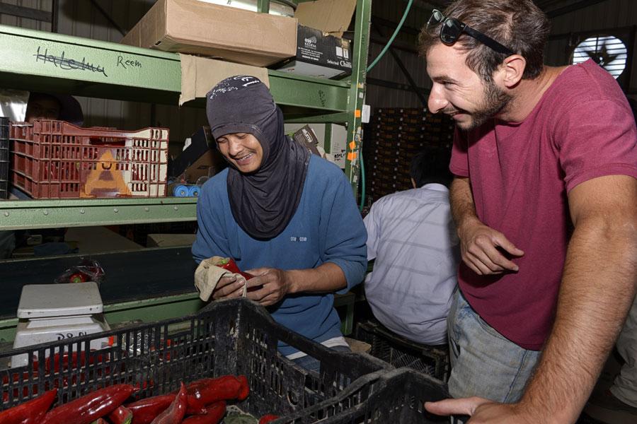 Israelische Arbeitgeber pflegen einen respektvollen Umgang mit den thailändischen Arbeitern.