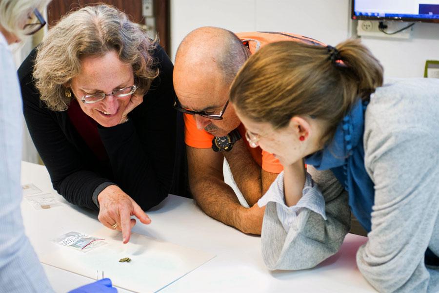 Forscher der Israelische Altertumsbehörde untersuchen einen neu entdeckten Abschnitt der Schriftrolle.