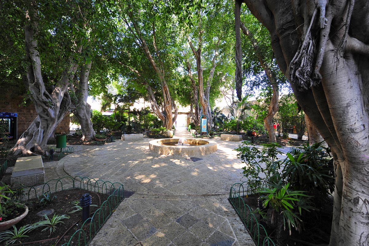 Gartenanlage vor dem Besucherzentrum.