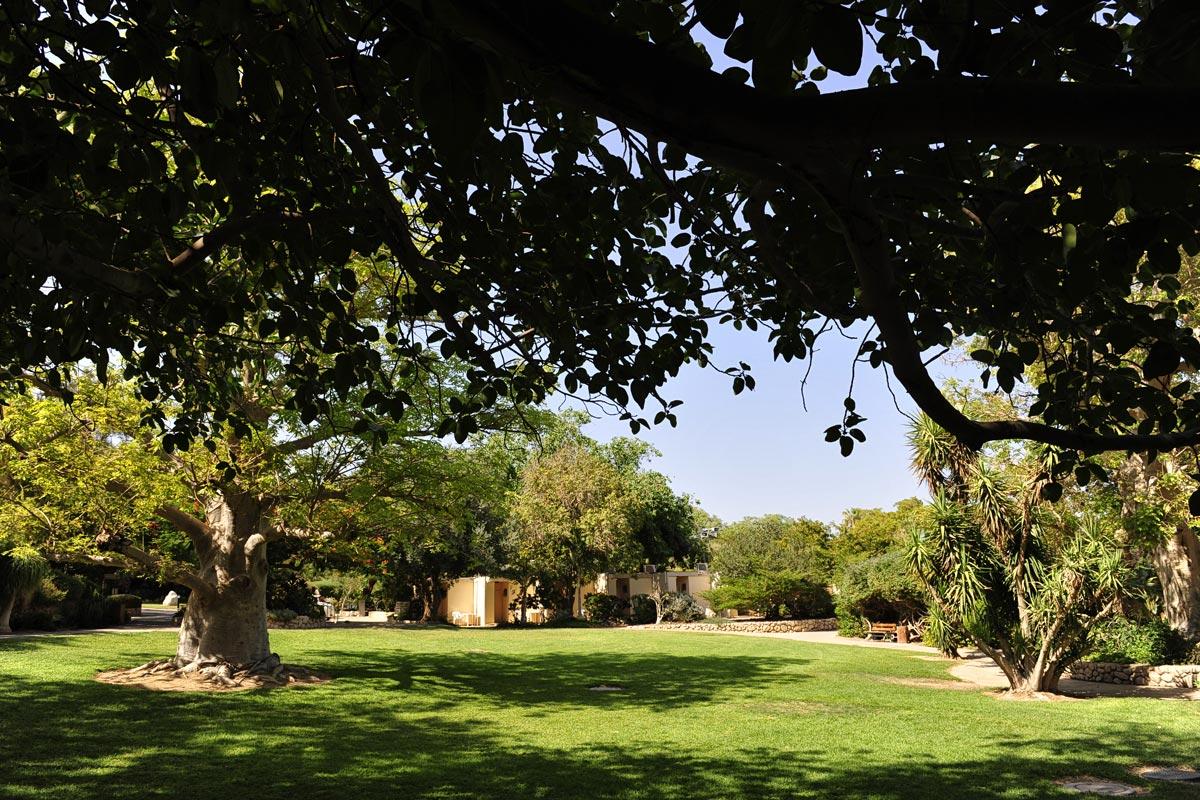 Botanischer Garten En Gedi