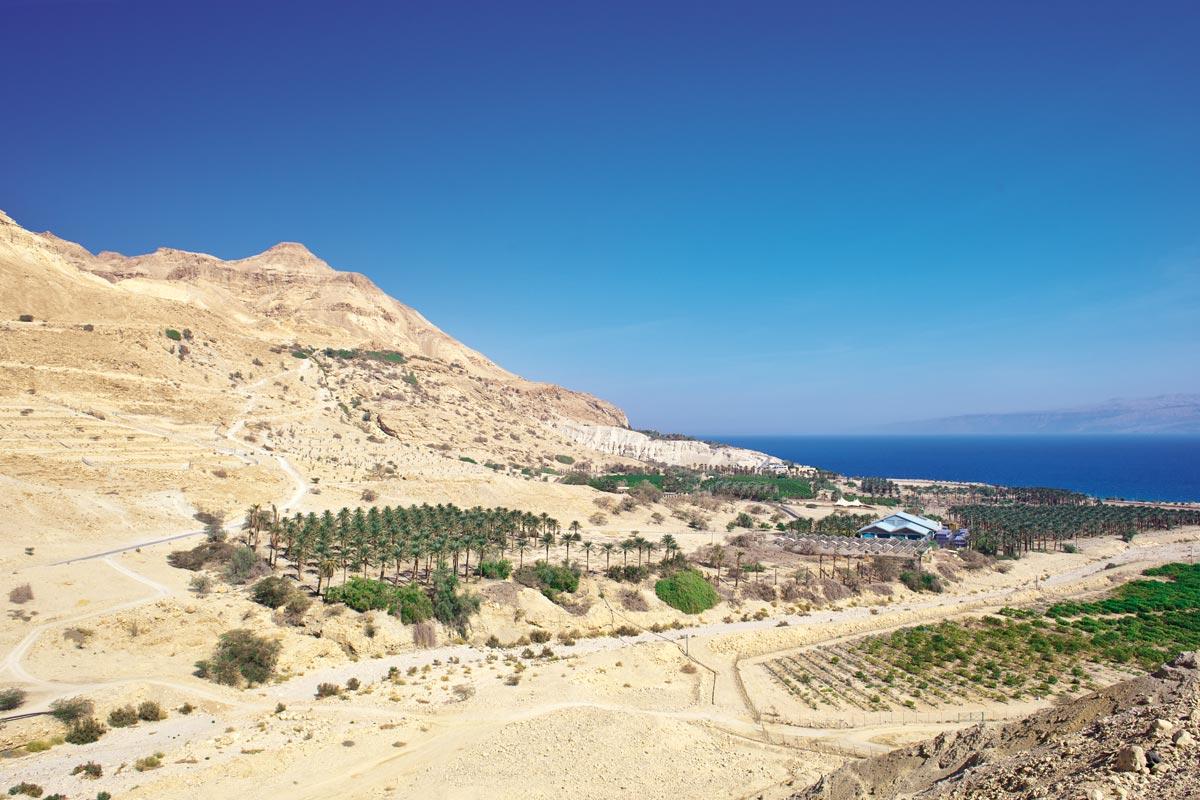 Ausblick vom Kibbutz En Gedi.