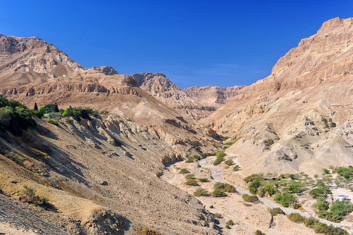 En Gedi - Wadi Arugot