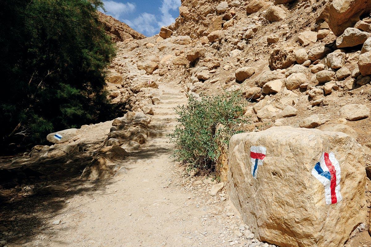 En Gedi - Wadi Arugot Wanderung