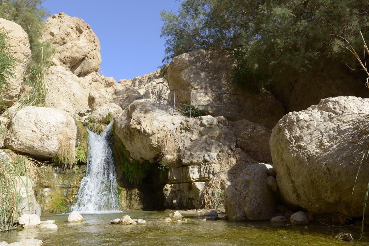 En Gedi - Wadi David: Idyllische Wasserfälle