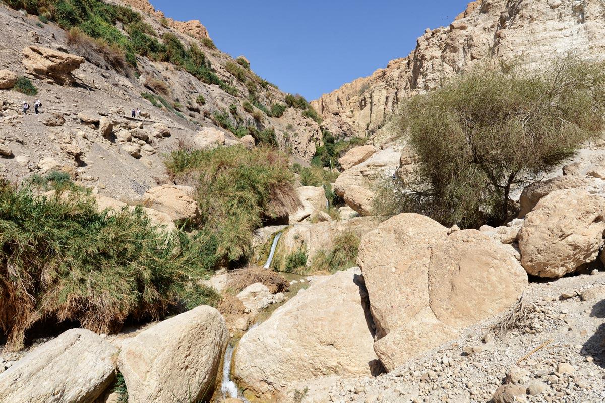 En Gedi - Wadi David: Bleibende Eindrücke.